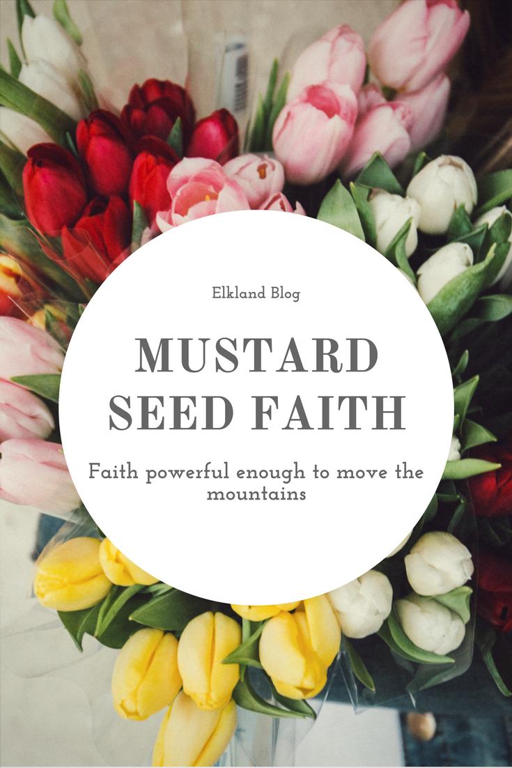 Mustard Seed Faith – ELKLAND